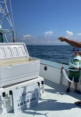 Tossing fish into cooler